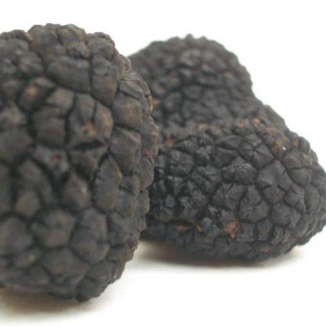 Black Summer Truffles 2a