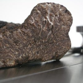 Fresh Black Winter Truffles (Tuber Melanosporum), 5-10g
