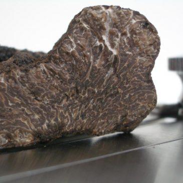 Fresh Truffle Gift Box – Black Winter Truffle (Tuber Melanosporum)
