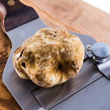 White Truffle: the Festive menu